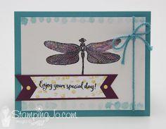 Dragonfly Dreams sta