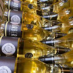 GEMISCHTER SATZ. Flaschengelage. Körber. . . Ab Hof Verkauf und Zustellung: Körbers-Weinliste und Preise ⬆️ Link in Bio: www.koerber.at . . . #koerbersheuriger #koerber #heuriger #weingut #weinliebe #winelove #gemischtersatz #weißwein #austrianwine #weinausösterreich #thermenregion #lichtspiel #golden #goldeneslicht #flüssigesgold #instawein #whitewine #mödling #bezirkmödling #genuss #cheers #feierdasleben #verbunden #zustellung #lieferservice #weinliste #preisliste #abhofverkauf Flüssiges Gold, Wine Rack, Cheers, Home Decor, Price List, Wine, Flasks, Decoration Home, Room Decor