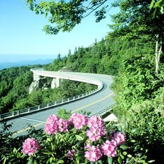 This Blue Ridge is located in North Carolina that is one of the most undisturbed and very calm roads in the world. It is 799 KM long road specially made , so that travelers experience a beautiful feast of nature.