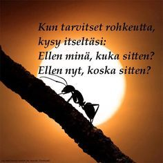 Live Life, Of My Life, Carpe Diem Quotes, Learn Finnish, Finnish Words, Original Quotes, I Can Relate, Life Organization, Life Advice