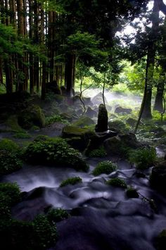 Yamagata, Japan. I want to go see this place one day.Please check out my website thanks. www.photopix.co.nz #travelphotographyideas #JapanTravelWebsite