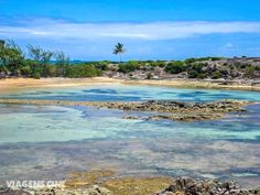 Melhores Praias de Pernambuco Brazil Beaches, Worlds Largest, Rio, Paradise, Environment, Water, Photography, Travel, Outdoor