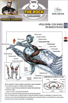 PULL, CON BARRA EN BANCO PLANO Chest Workouts, Gym Workouts, At Home Workouts, Lower Belly Pooch, Long Hair Tips, At Home Workout Plan, Shoulder Workout, Barbell, Cool Words