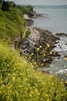 View from the Cliff Walk in Newport, Rhode Island