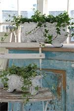 Love the blue on the cabinet and the lovely ivy in concrete planters<3