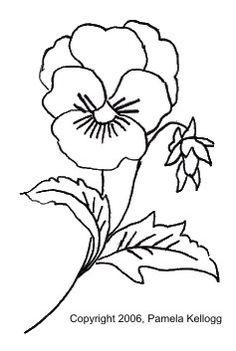 Viola Tricolor or Pansy Coloring