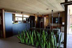 cool way to have indoor plants! Edris House