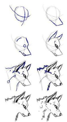 New eye drawing tutorial wolf ideas Drawing Skills, Drawing Tips, Drawing Reference, Drawing Sketches, Drawing Process, Drawing Ideas, Pencil Sketching, Card Drawing, Pose Reference