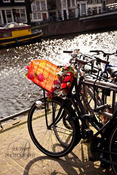 Amsterdam and Bicycles 16x24 Fine Art Canvas Photography Print, Home Decor, Travel Photography