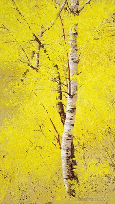 Kim Jong Won (김종원) is a contemporary artist, a graduate of the College of fine arts of the University of Vongwan. Kim Jon Won works in a realistic manner … Impressionist Landscape, Landscape Art, Landscape Paintings, Watercolor Trees, Watercolor Paintings, Birch Tree Art, Fine Arts College, Aspen Trees, Mellow Yellow