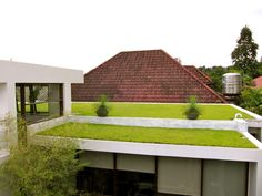 eco-roof - a lot of possibilities for outside living in an urban environment