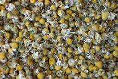 Dried chamomile flowers have a subtle apple fragrance and soothing aromatherapy properties. Try combining with dried lavender for making potpourri daisyshop.co.uk