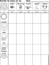 Which Senses Do You Use Weather Printable Worksheet A Printable