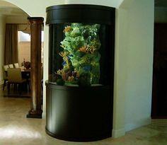 Amazing Aquariums on Pinterest Reef Aquarium, Aquarium and Saltwater ...