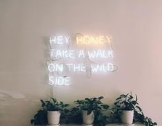 Hey honey take a walk on the wild side neon lights Pretty Words, Beautiful Words, Cool Words, Wise Words, Tumblr Neon, Neon Quotes, Foto Art, Deco Design, Neon Lighting