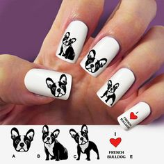 Bulldog french, nail art, nail decal, 60 pc waterslide nail decal #dog07