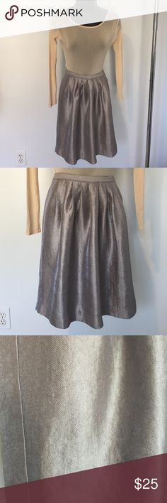 "Suuper Cute Pewter skirt I paired this skirt with a peach bodysuit and it's a simple but trendy look. The skirt has pleats all around the waist giving it a full ladylike look.  There is a hidden zipper on the side. Length is approx 20 1/2"". It is in great condition. Skirts Mini"