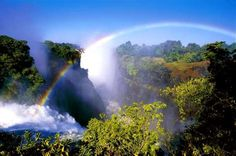 To truly understand how large Zimbabwe's Victoria Falls are requires a birds-eye or panoramic view: ... - Theresa Edwards