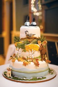Baker: Let Them Eat Cake /  Photo: Meredith Perdue Photography