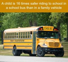 Are school buses safer than a family vehicle - WTF fun facts (WTF Facts : funny & weird facts) Funny Weird Facts, Fun Facts Scary, Weird But True, True Facts, Random Facts, Crazy Facts, Random Stuff, Odd Facts, Funny Stuff