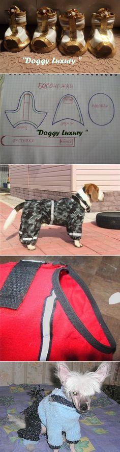 Одежда для собак | Записи в рубрике Одежда для собак | Дневник arzu1
