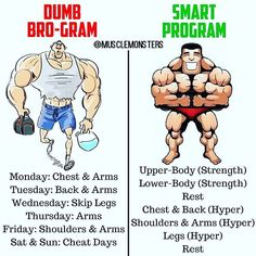 Dumb Bro-Gram VS Smart Program By @musclemonsters _ If youre looking to maximize your efforts in the gym then hammering each muscle group once per week or spending the majority of your time focusing on small isolation lifts is not the solution. Sure y https://www.musclesaurus.com/