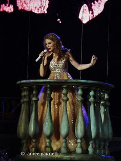 Taylor Swift's Speak Now World Tour, Pittsburgh PA