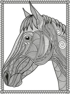 Mammals Zebras Coloring Pages Free Printable Horses Animals Colouring Books