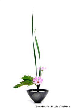 Ikebana Flower Arrangement, Ikebana Arrangements, Flower Arrangements Simple, Exotic Flowers, Beautiful Flowers, Purple Flowers, Bonsai, Peonies Garden, Flowers Garden