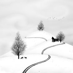 "rosiesdreams: ""A winter landscape . By © Sherry Akrami "" Landscape Photography, Art Photography, Art Aquarelle, Black And White Landscape, Black White, Tinta China, Landscaping Software, Art Graphique, Winter Landscape"