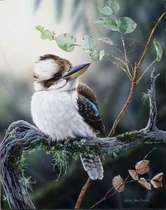 A Winter's Morning - Laughing Kookaburra Scratchboard Art, Bird Artwork, Bird Paintings, Australian Animals, Selling Art, Wildlife Art, Beautiful Birds, Pet Birds, Painting & Drawing