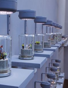 Diorama in a jar  by Jimmy Cauty  http://arrestedmotion.com/2011/06/showing-james-cauty-a-riot-in-a-jam-jar/