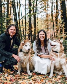 Everthine Bride (@everthinebridal) • Instagram photos and videos Anna Campbell, Glamour, Bride, Photo And Video, Wedding Dresses, Videos, Unique, Photos, Animals