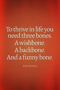 3 bones of life :-)