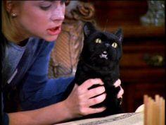 Salem! (Sabrina the Teenage Witch)