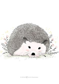 Hedgehog nursery print of original illustration by Micush. Minimalist and cute hedghog wall art print for nursery, playroom or bedroom., *** Please note that this print is only available in Israel *** The print is available in 2 sizes: Hedgehog Illustration, Illustration Sketches, Whatsapp Wallpaper, Cute Hedgehog, Paper Animals, Woodland Creatures, Cute Cartoon, Watercolor Art, Paper Art