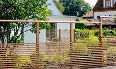 Backyard, Patio, Green Garden, Plank, Outdoor Gardens, Pergola, Outdoor Structures, Outdoor Decor, Gardening