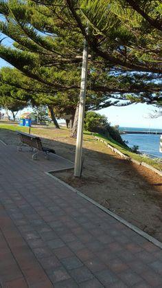 Kangaroo Island, Sidewalk, Side Walkway, Walkway, Walkways, Pavement