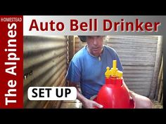 How to Set up Automatic Bell Drinker for Broiler Chickens