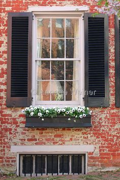 window boxes... brick house with black shutters and black window boxes - - white flowers foliage - - I wonder about a copper window box though