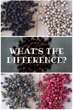 What are the Differences Between Peppercorns? - Eat Like No One Else Korn, Sumac Spice, Types Of Peppers, Black Pepper Essential Oil, Green Peppercorn, Pepper Tree, Pepper Spice, Spices And Herbs, Learn To Cook