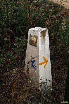 Camino a Belorado