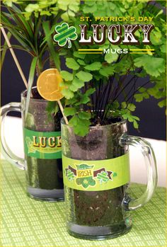 St. Patricks Day Centerpiece: Lucky Mugs