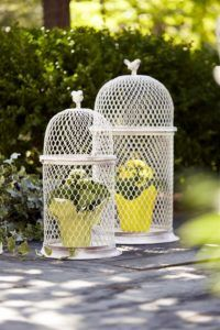 Melrose Set of 2 Weathered Finish Decorative Chicken Wire Cages with Tiny Bird Toppers Portable Chicken Coop, Diy Chicken Coop, Chicken Wire, Bird Cages, Bird Feeders, Cloche Decor, Chicken Cages, Chicken Coop Designs, Tiny Bird