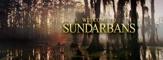 Welcome to Sundarbans!!