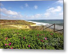 Cape Cod Coastline Metal Print By Denis Tangney Jr
