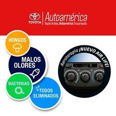 Mantén tu #Toyota libre de olores de mascotas, tabaco y comida con nuestra…