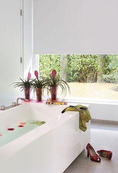 welke planten mag je voor op de badkamer - Google zoeken   badkamer ...