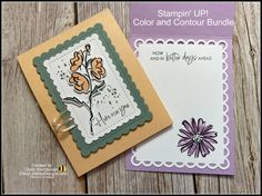 Stampin' UP! Sneak Peek Color and Contour Bundle with NEW 2021-2023 In Colors   Cindy Lee Bee Designs