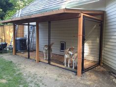We made an inside outside dog kennel! Just amazing work! The dogs their new home! (It goes into a kennel in the garage) ideas for dogs Top 40 Large Dog Crate Ideas In 2019 Large Dog Crate, Large Dogs, Large Dog Pen, Large Dog House, Diy Dog Kennel, Kennel Ideas, Dog Kennel Designs, Outside Dogs, Dog Pens Outside